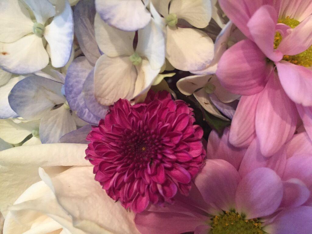 Small Blue And White Planter Gina Diamonds Flower Co