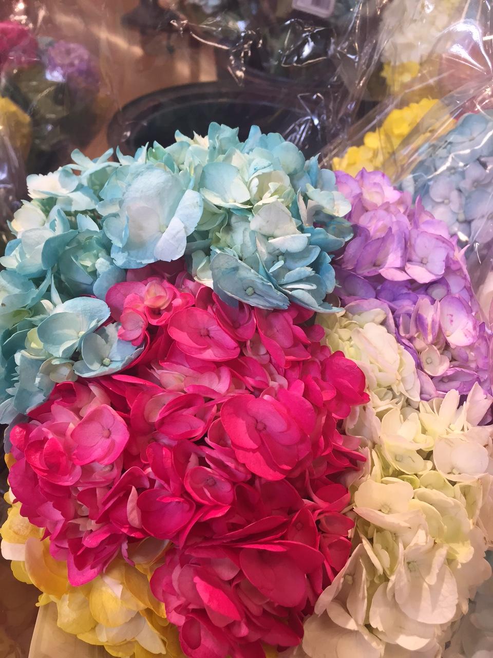 Artificially Dyed Flowers, Mums & Pumpkins – Gina Diamond\'s Flower Co.